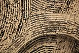 background wall texture brown with black stripes