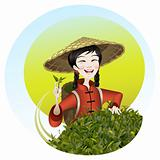 The girl reaps a tea crop