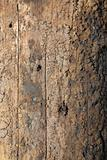 Weathered Telephone Pole