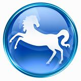 Horse Zodiac icon blue, isolated on white background.
