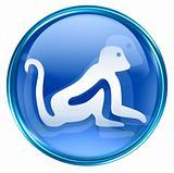 Monkey Zodiac icon blue, isolated on white background.