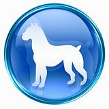 Dog Zodiac icon blue, isolated on white background.