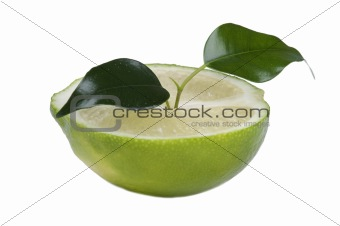 Cutting lime macro