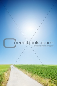 country road with cloudless sunny sky