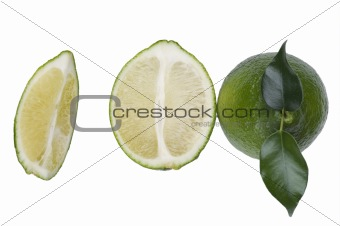 Cutting lime close up