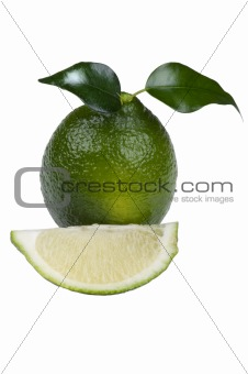 Cutting lime on white background