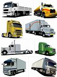 Vector illustration of eight  trucks