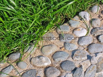 Background of pebble and grass