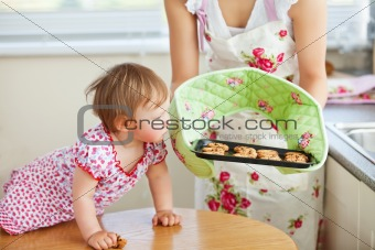 Small girl looking at cookie in kitchen