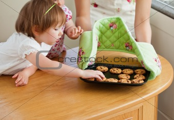 Sweet girl taking a cookie in kitchen