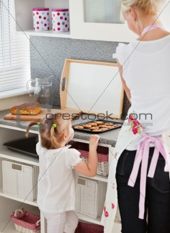 Small girl taking a cookie in kitchen