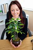 Pretty businesswoman holding a plant