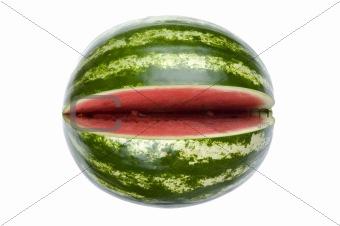 watermelon on white macro