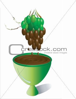 Green grapes in the chocolate.