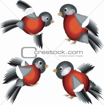 Set of bullfinches