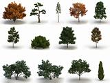 mega pack trees