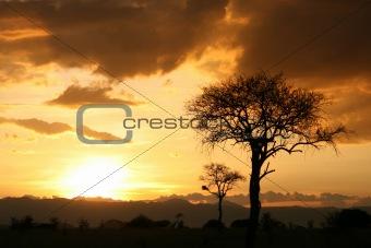 African Sunset. Tanzania, Africa