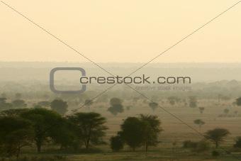 Landscape-  Tarangire National Park, Africa