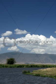 Watering Hole - Ngorongoro Crater, Tanzania, Africa