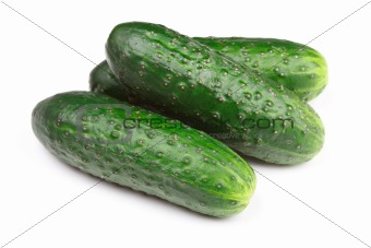 Green cucumbers isolated