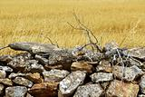 masonry stone wall golden summer field