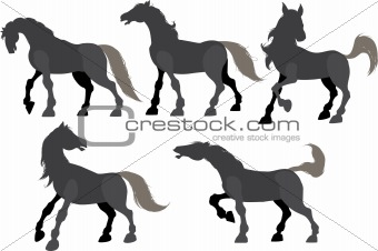 Five silhouette frolicking horses