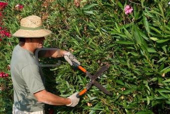 Gardener pruning