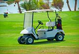 Golf buggy on a fairway