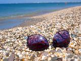 Sunglasses on a summer beach