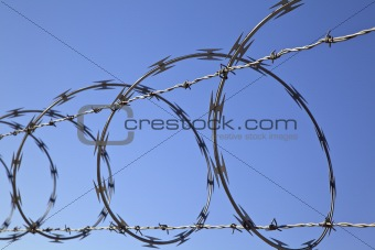 Barbed Concertina Wire on Fence, Security Device