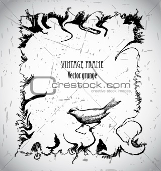 Frame grunge background with bird. Vector