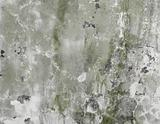 Concrete dirty green wall background