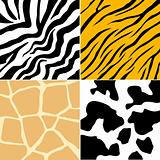 Animal Skin Collection