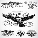 Vector Eagle Set