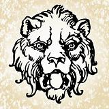 Vector Lion Head