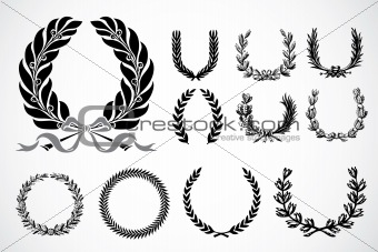 Vector Olive Leaf Ornaments