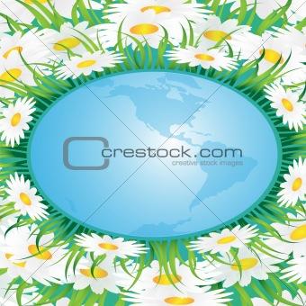 Chamomile and globe