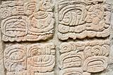 Copan