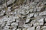 Stairs in ancient Copan