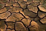 Cracked lifeless soil
