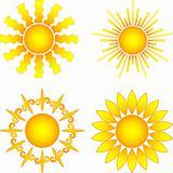 sun collection
