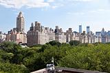 Manhattan skyline and the Central Park
