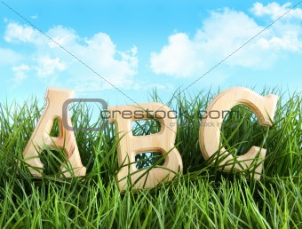 ABC letters in the grass