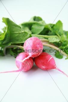 3 radishes