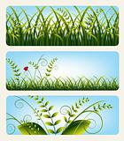 Grass banners, vector
