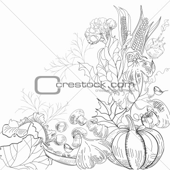 Sketch with vegetable