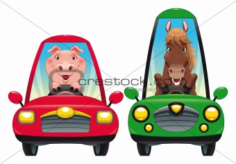 Animals in the car: