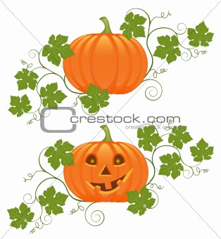 Floral ornament with a pumpkin. Vector illustration.