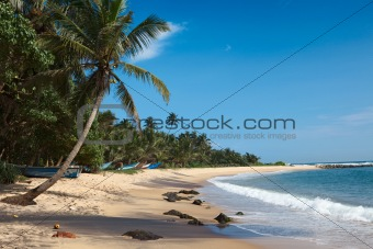 Idyllic beach. Sri Lanka
