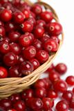 ripe cranberries in bowl isolated